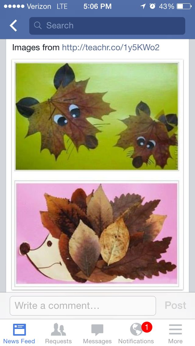 Fall Leaf Faces