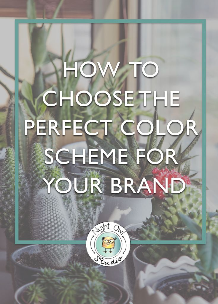 Choosing a color scheme for your brand can be overwhelming and often intimidating. There are so many different combinations of colors! A well-chosen color scheme is crucial in creating a solid brand and connecting with your target audience. I used to think that you just picked ONE color and that was your brand color, but I was sooooo wrong….. There are so many variables to be considered and real strategy involved to choose the perfect color scheme for a brand.