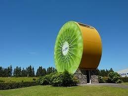 Kiwifruit Country, Te Puke, New Zealand
