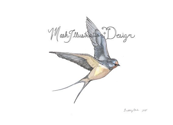 FREE SHIPPING Barn Swallow Illustration Watercolor Print by Artist Brittany Mash