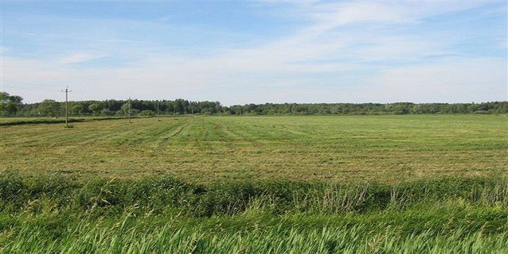 72 Acre Semi Commercial Agricultural Land for Sale Raiwind Road Lahore