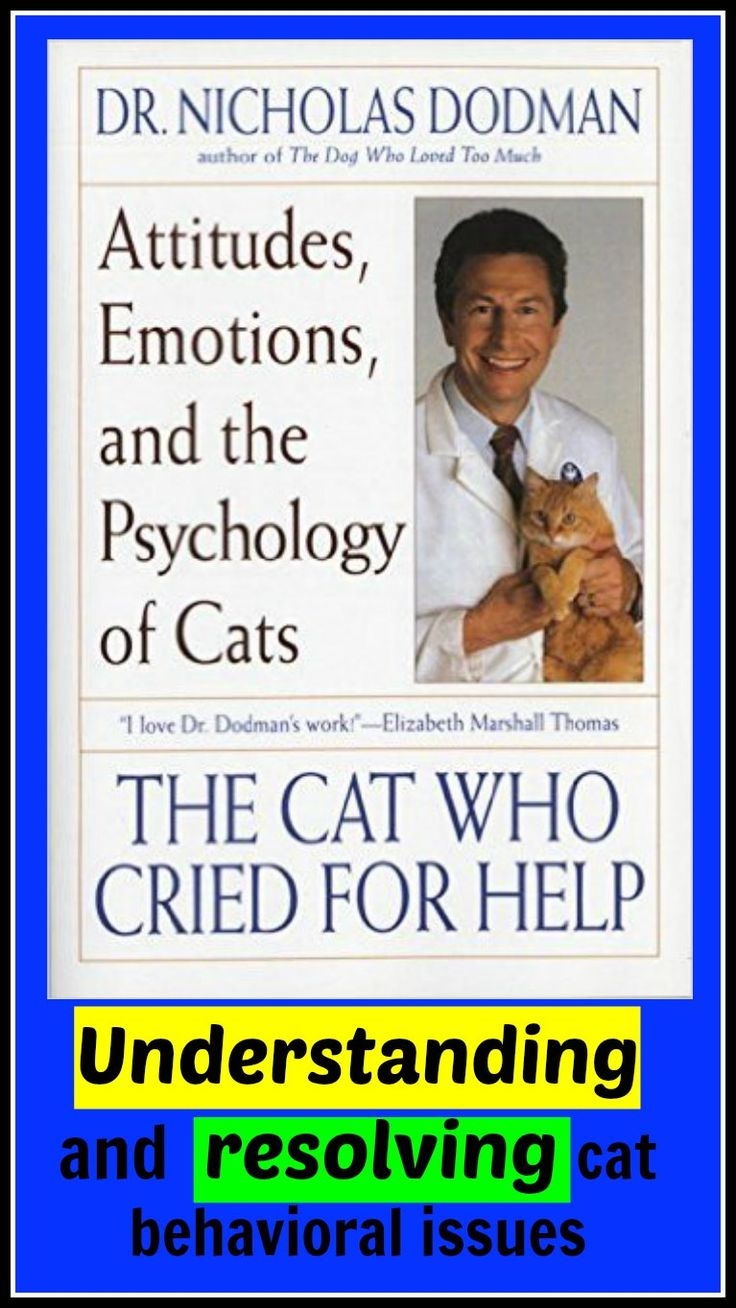 Understanding and resolving cat behavioral issues