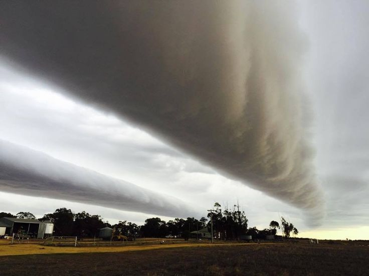 When Morning Glory came to Bunaloo, NSW.   25 Times Australia's Weather Was The Craziest In 2015