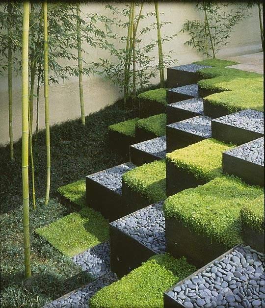 paysage ultramoderne: cubes de galets et plantes tapissantes
