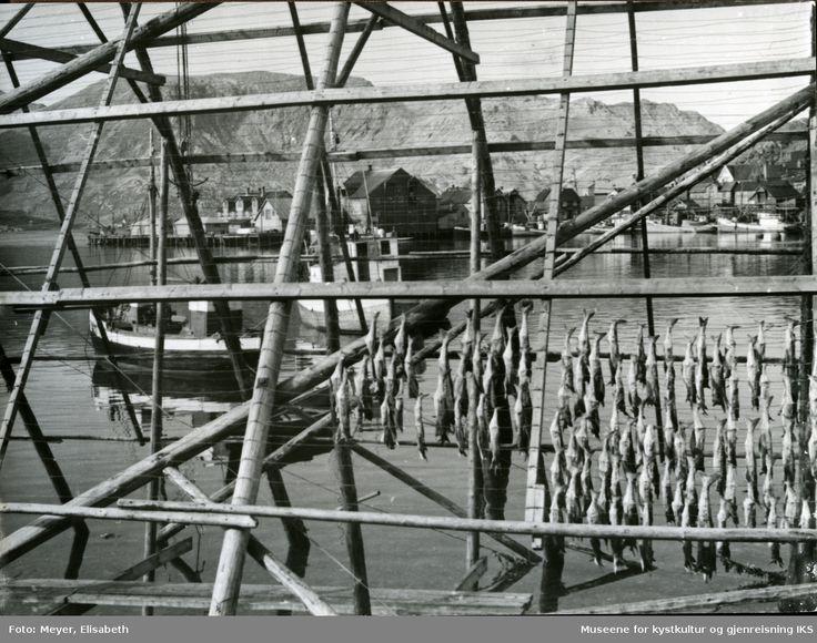 Bildet tatt fra Vågen gjennom en fiskehjell med tørrfisk. I bakgrunnen ser man Holmenområde med dampskipskaia, fiskebåter og bebyggelsen. @ DigitaltMuseum.no