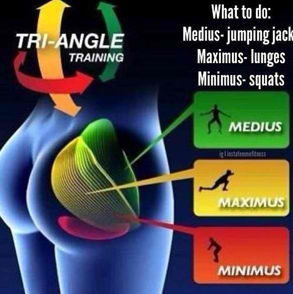 Ejercicio de Gluteos, que hacer segun las areas del musculo que se quiere trabajar