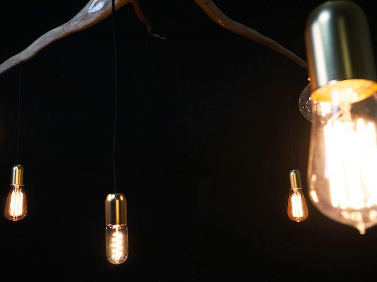 Root chandeliers - atmospheric lighting.