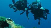 Beginner Scuba Diving Experience in Padangbai, Bali, Scuba Diving