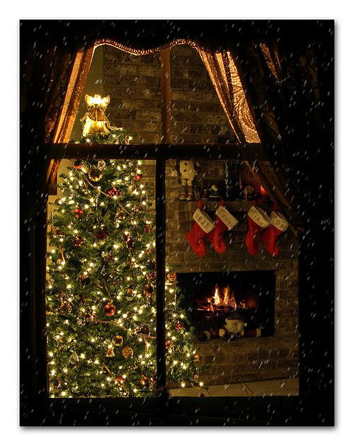 This reminds me of my christmas tree at home shining through the giant front window! <3