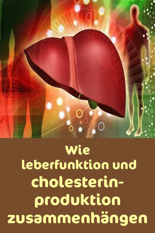 Wie Leberfunktion und Cholesterinproduktion zusammenhängen ...