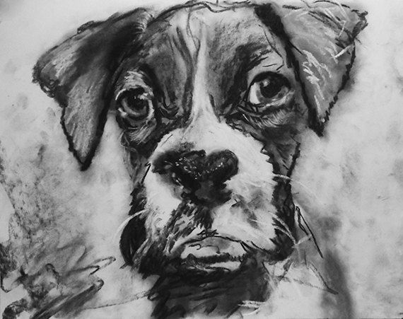 See My Art At Oscarjetson Com Or Email Me At Oscarjetson Gmail Com To Buy Custom Art Dogs Art Dogbre Custom Dog Portraits Puppy Wall Art Custom Pet Painting