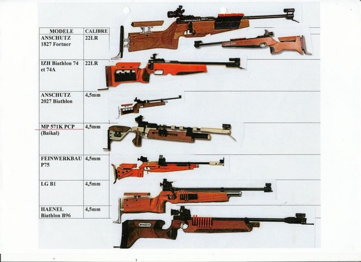 Biathlon Rifle comparison A fun but underrated sport