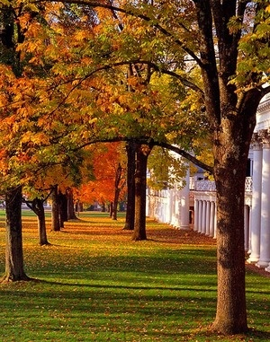 University of Virginia Lawn. Nothing on earth beats this place