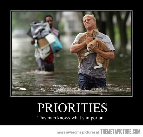 The right prioritiesThis Man, Animal Lovers, Cat, Heroes, A Real Man, Priority, Pets, Nature Disasters, Kitty