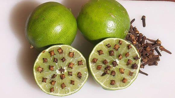 limone chiodi garofano repellente mosche