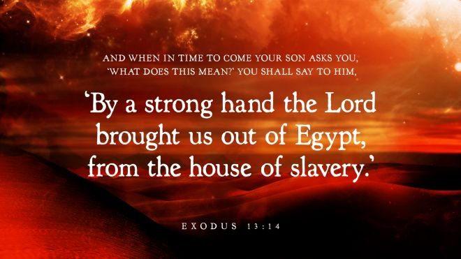 """""""And when in time to come your son asks you, 'What does this mean?' you shall say to him, 'By a strong hand the Lord brought us out of Egypt, from the house of slavery.'"""" —Exodus 13:14"""