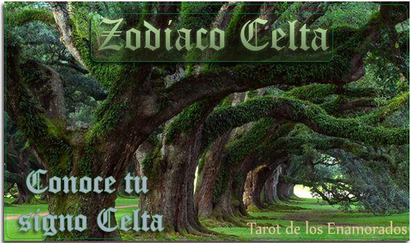 Conoce los detalles de la Astrología Celta. Descubre los signos celtas y que animal te representa. Conocerás las distintas cualidades de los animales. #zodiaco #celta #celtas #signo #sceltas