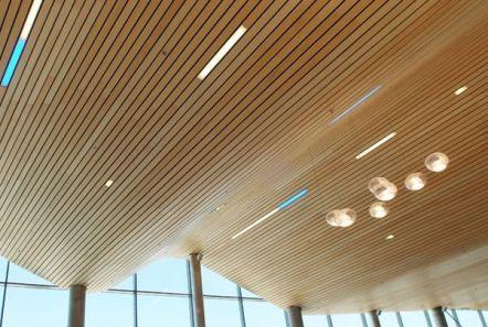 Te presentamos nuestro Cielo Woodlines, excelente alternativa sustentable a la…