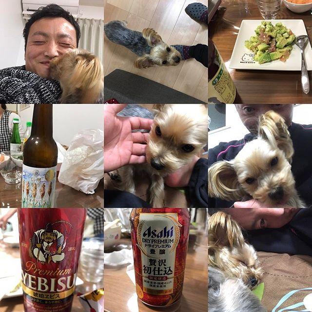 今夜は親友のお家で手作り料理とお酒をたらふく堪能(*´꒳`*)🎵 生後5カ月余りの可愛いお子ちゃまにもご対面😍💕 愛犬ロッキーには顔中ペロペロ舐め回されたり(*^^*)💦笑  至福のひと時です♪(๑ᴖ◡ᴖ๑)♪ #親友  #子供  #飲み  #手作り料理  #アボカド生ハムサラダ  #豚しゃぶ鍋  #ご当地ビール  #エビスビール  #アサヒビール  #愛犬  #至福のひと時