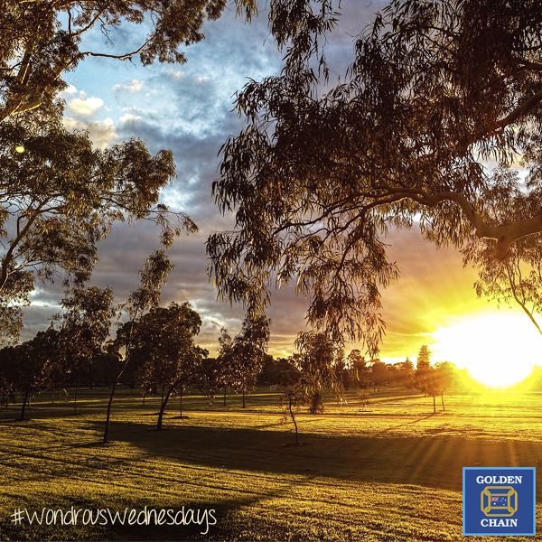 Sunrise in the Adelaide parklands is the perfect way to start off our Wondrous Wednesdays! Any South Australians here want to tell us your favourite thing about #Adelaide? #park #beautiful #wonder #nature #WondrousWednesdays #Australia #SouthAustralia #sunrise #park #parklands