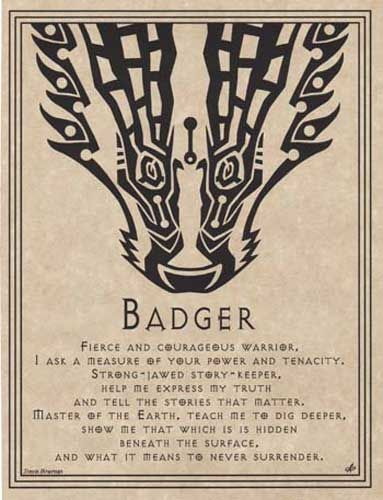 Badger's Wisdom Includes: Keeper of stories Bold Self-Expresssion Aggressiveness Single-mindedness Passion Cunning Revenge Perseverance Control Antidote to passivity or victimization Persistence in the service of a mission Groundedness Knowledge of the earth Earth magick and wisdom Creative action in a crisis Protection of rights and spiritual ideas
