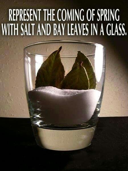 7 Bay leaves and salt in a glass to get rid of negative energy
