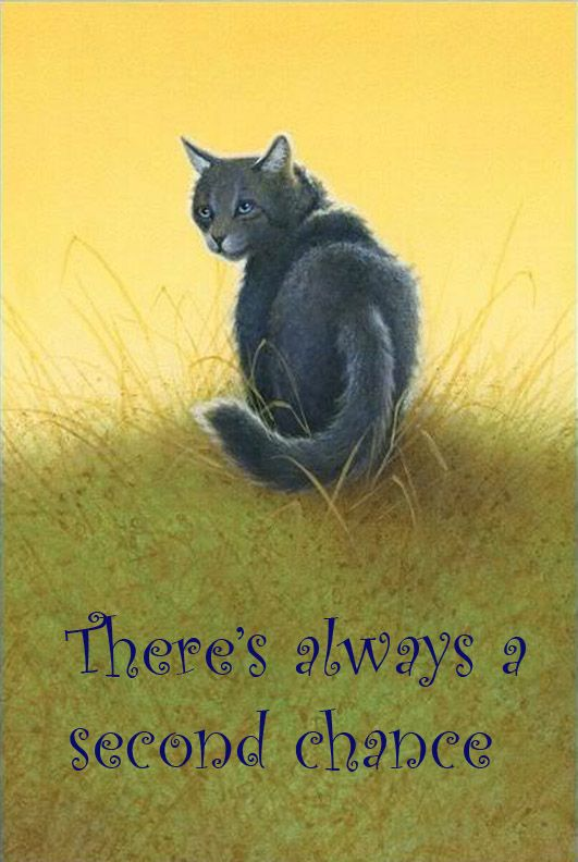 Google Image Result for http://fc02.deviantart.net/fs71/f/2012/002/1/4/warrior_cats_quotes_words_by_iamblossom-d4l46t9.jpg