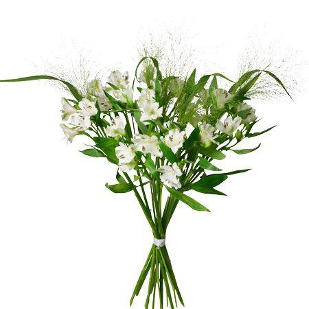 Alstromeria, en av de vanligaste blommorna i blandade buketter, men här ståtligt själv.