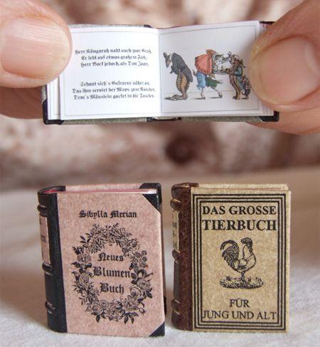 Curiosidades do Brasil e do Mundo: Coleção de Livros em Miniatura!!!