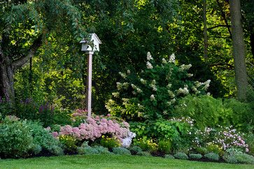 lovely border -Late summer garden - traditional - landscape - boston - Amy Martin Landscape Design