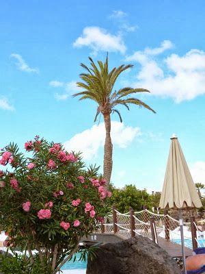 Urlaub auf Lanzarote - Familienhotel Hotel Lanzarote Gardens - Costa Teguise http://www.reisen-sehenswuerdigkeiten.de