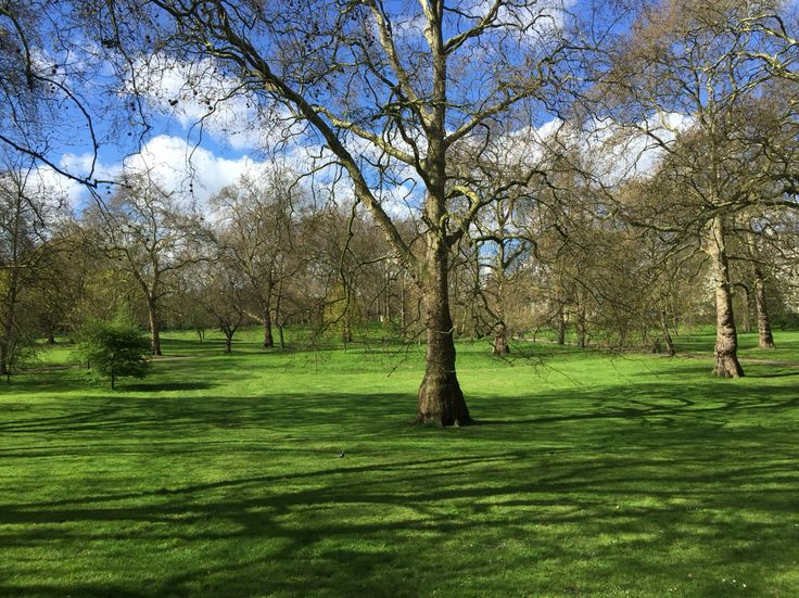 How green is Green Park London in spring?