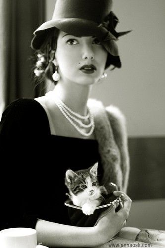 three strands of pearls and a kitty. that's all i need...: Cat, Vintage Women, 40S Style, Cafe Paris, Vintage Hats, Kittens, Vintage Photo, Vintage Girls, Kitty