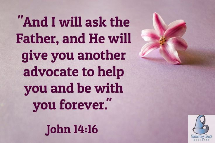 """""""And I will ask the Father, and He will give you another advocate to help you and be with you forever."""" - John 14:16 NIV #bible"""