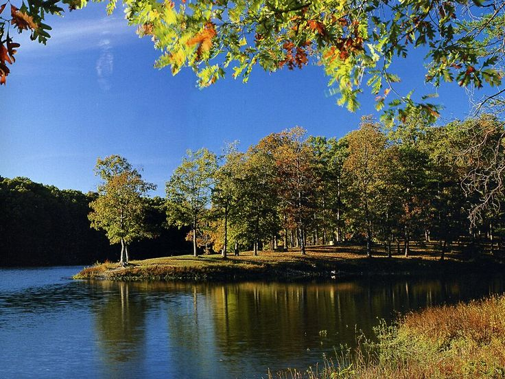 17 best images about nature of clark county indiana on