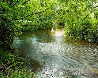 river in Wimborne Minster - Wimborne Minster