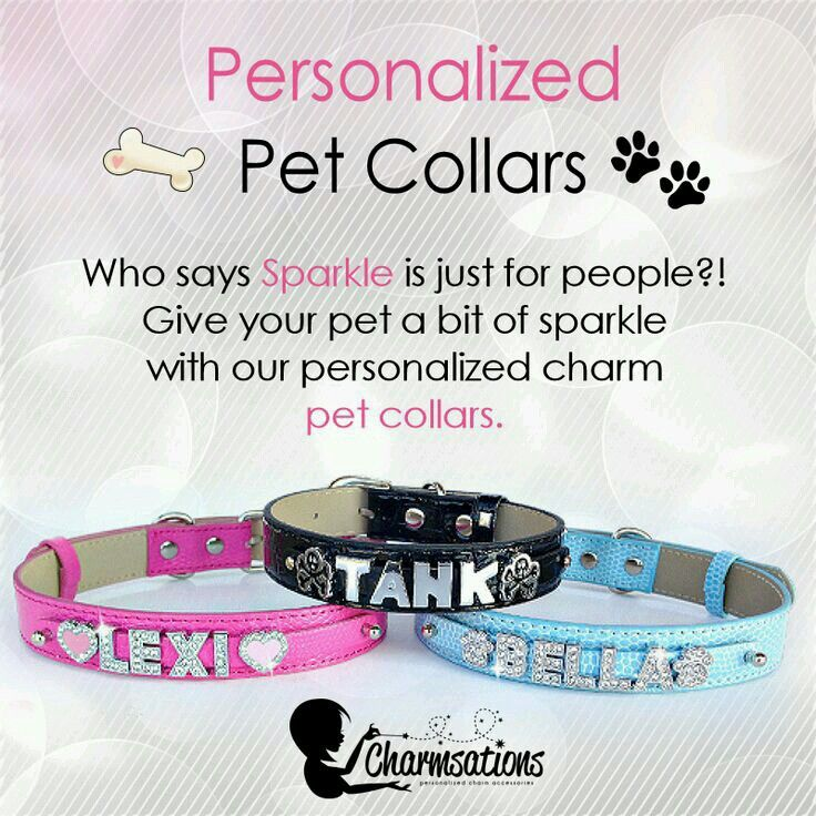 sparkly personalized personalized collars sparkle by leslie pets cat