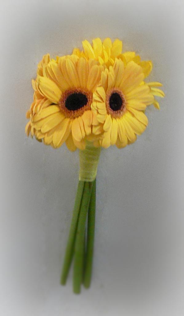 Yellow Gerber Daisy Bridesmaid Bouquet. I'd add sunflowers