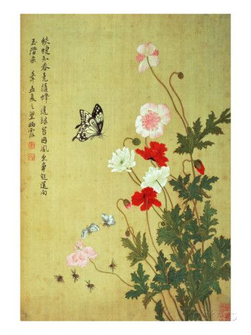 Poppies, Butterflies and Bees Giclee Print by Ma Yuanyu at AllPosters.com