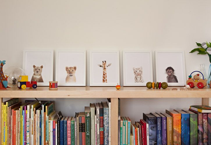 Row of Little Darlings - The Animal Print Shop by Sharon Montrose