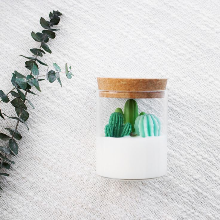 Cactus candle for cactus and succulent lovers mini