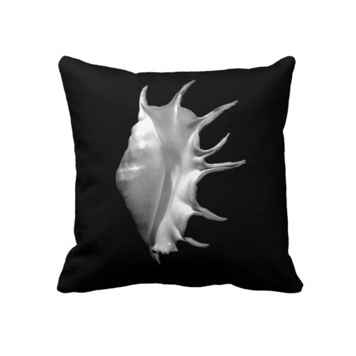Giant Spider Conch  Lambis truncata  ~ Pillow