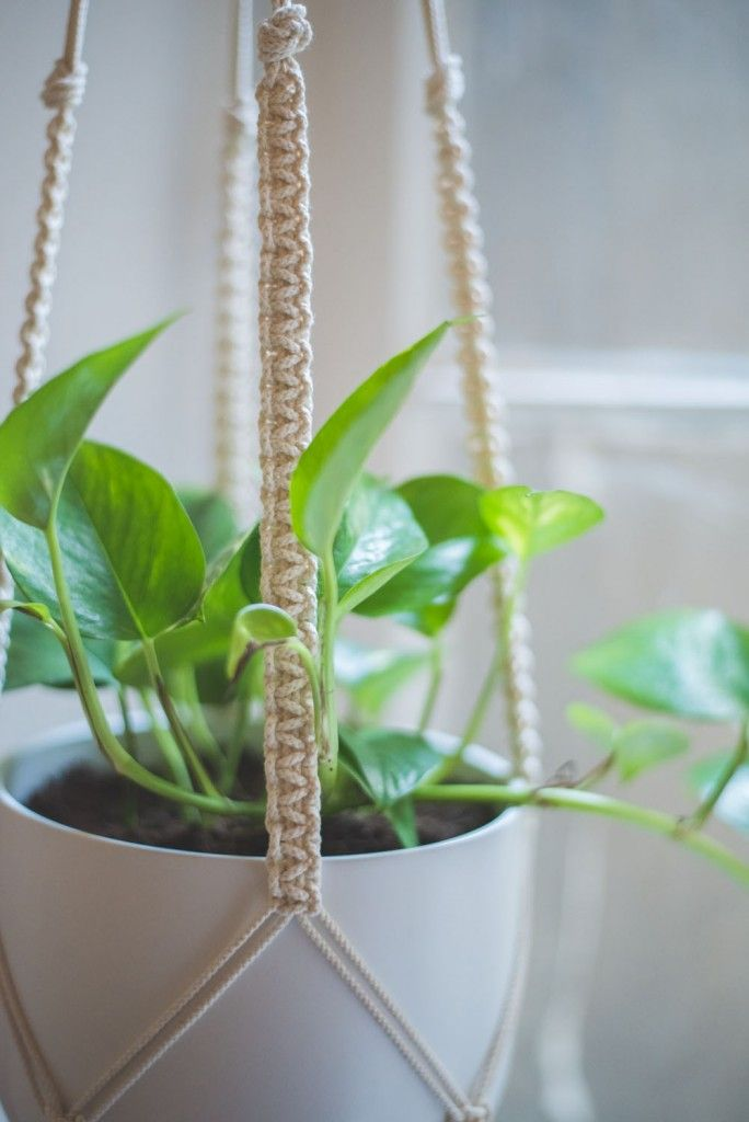 Easy Home-DIY: Macrame Plant Hanger Tutorial