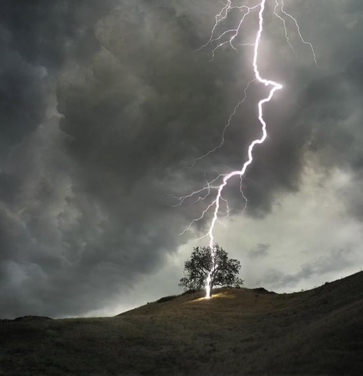 LightningLighten Strike, Lightning Strike, Take Pictures, Nature Pictures, Beautiful, I Love Thunderstorms, Magic Places, Families Trees, Birds Of Paradise