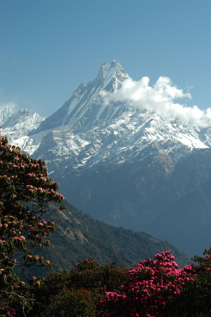 Machupuchare in the Annapurna Range of the Himalaya in central Nepal is a mountain influenced by monsoons.