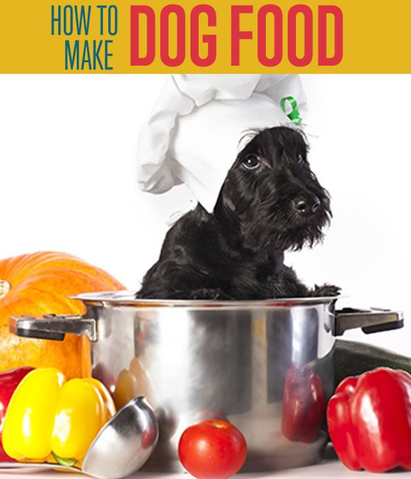 Homemade Dog Food | Recipe and Instructions - DIY Ready | Projects | Crafts | Recipes