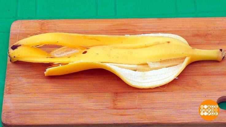 Банановая кожура для рассады. 04.05.2017