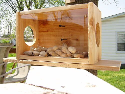 Handmade Cedar See-Thru Squirrel Feeder.