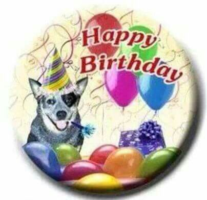 Happy Birthday  ~°•°•☆•《Ocassions & Salutations ...