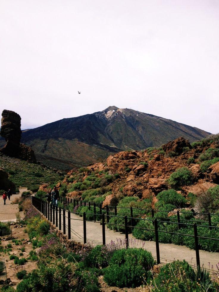 #spain #tenerife #mountain | yummyuumi | VSCO Grid